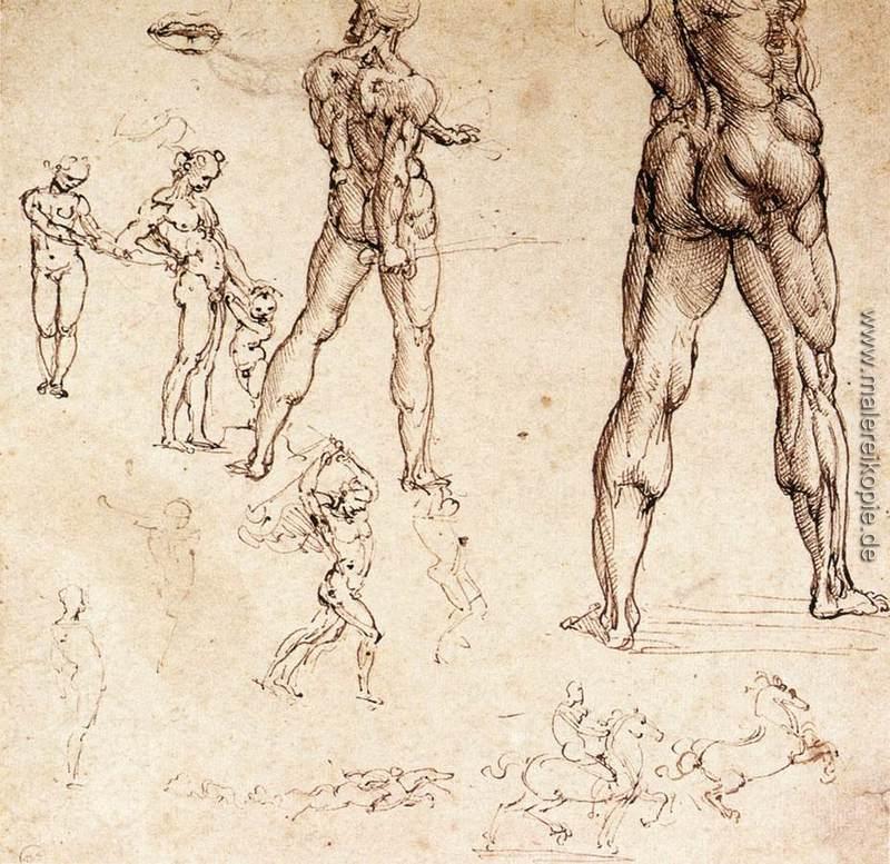 Anatomische Studien di Leonardo da Vinci von Leonardo da Vinci ...